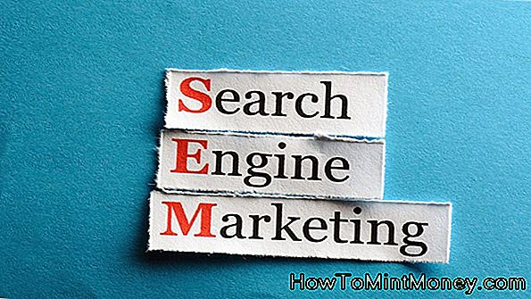 SEMPO Search Marketing Umfrage
