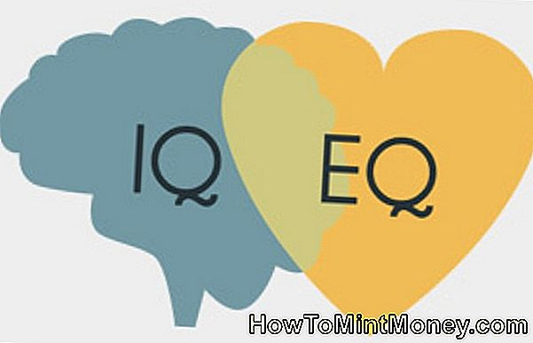 IQ vs. EQ: Messung emotionaler Intelligenz am Arbeitsplatz