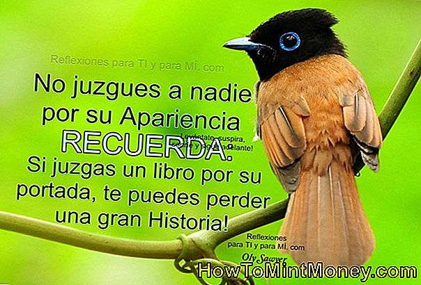 No juzgues un libro