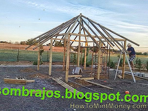 Homesteading su casa